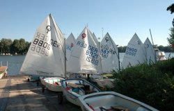 ABC Regatta 2013